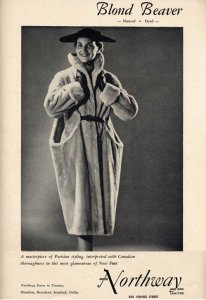 biber_northway_blond_beaver_1953_web