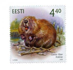 biber_eesti_440_web