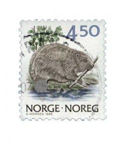 biber_norge_450_web