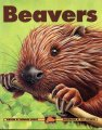 biber_buch_beavers_hodge_web
