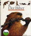 biber_buch_biber_kinderbibliothek_web