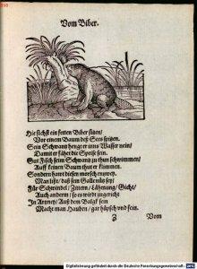 thierbuch_ammann_bocksperger_1617_1_web