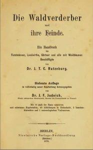 waldverderber_1876_web