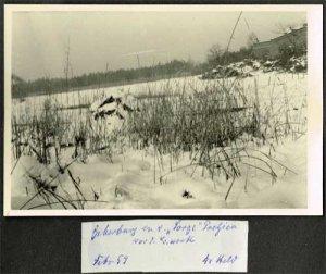 elbebiber-biberbau-pretzien-grosse-sorge-februar-1959
