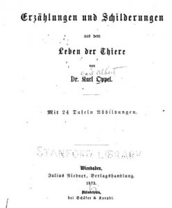 oppel-thiergeschichten-1873
