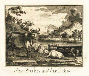 boehmer-der-bieber-und-der-ochs-18-jhdt