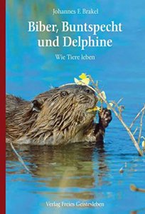 brakel-biber-buntspecht-und-delphine