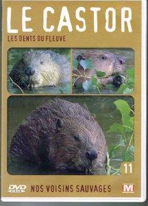 film-le-castor-les-dents-du-fleuve-2005