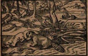 fischart-das-philosophisch-ehezuchtbuechlein-1597