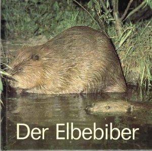 robiller-der-elbebiber