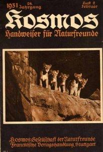 alfred-hilprecht-das-biberschutzgebiet-am-elbstrom-1931
