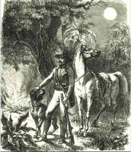 armand-amerikanische-jagd-und-reiseabenteuer-1858